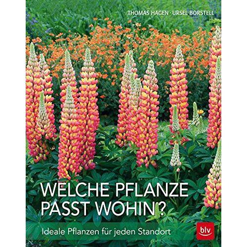 Thomas Hagen - Welche Pflanze passt wohin?: Ideale Pflanzen für jeden Standort - Preis vom 26.02.2021 06:01:53 h