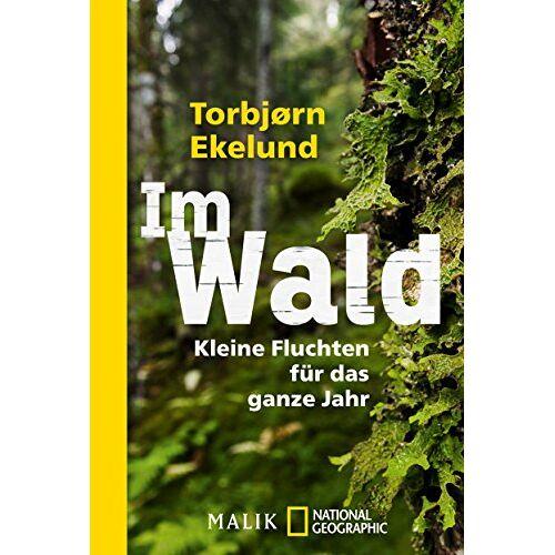 Torbjørn Ekelund - Im Wald: Kleine Fluchten für das ganze Jahr - Preis vom 20.10.2020 04:55:35 h