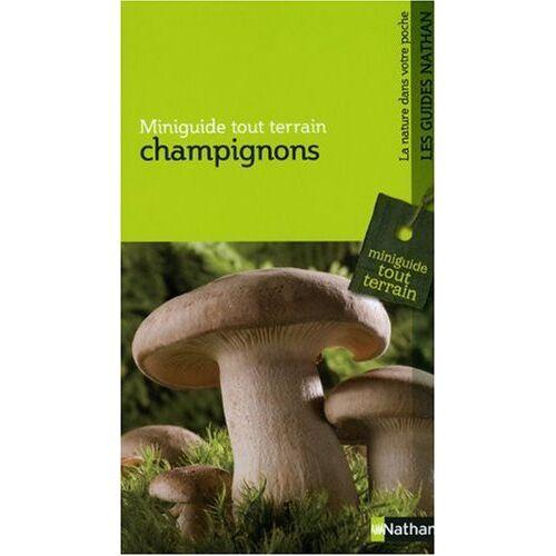 Jean Rovéa - Champignons - Preis vom 14.04.2021 04:53:30 h