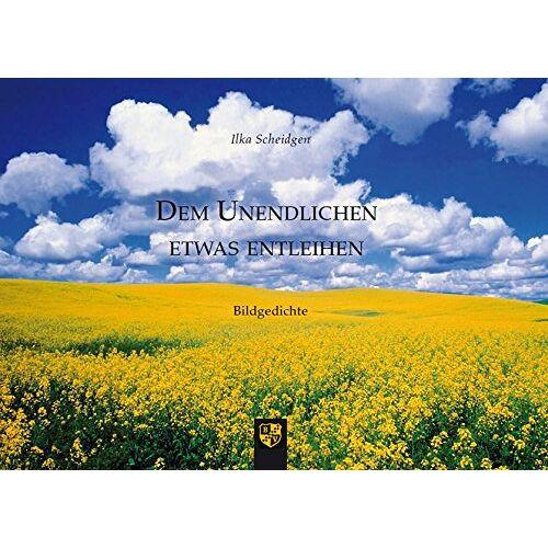 Ilka Scheidgen - Dem Unendlichen etwas entleihen: Bildgedichte - Preis vom 20.10.2020 04:55:35 h
