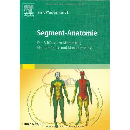 Ingrid Wancura-Kampik - Segment-Anatomie: Der Schlüssel zu Akupunktur, Neuraltherapie und Manualtherapie - Preis vom 24.02.2021 06:00:20 h