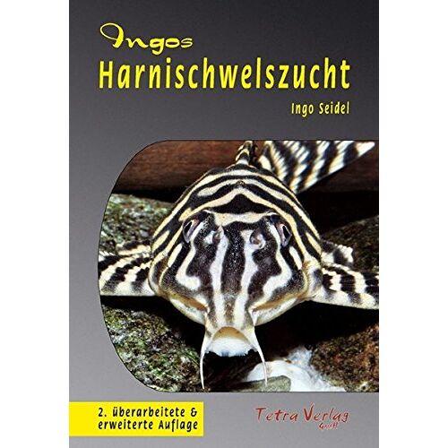 Ingo Seidel - Ingos Harnischwelszucht - Preis vom 24.02.2021 06:00:20 h