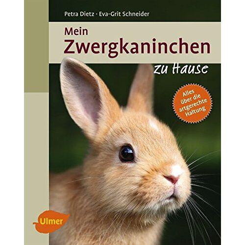 Petra Dietz - Mein Zwergkaninchen zu Hause - Preis vom 12.05.2021 04:50:50 h