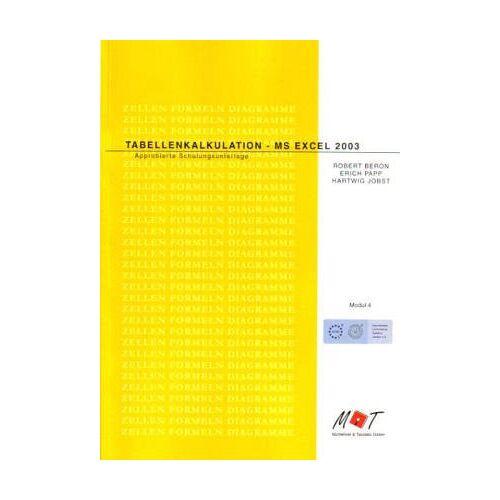 Robert Beron - Tabellenkalkulation - MS Excel 2003 - Preis vom 16.05.2021 04:43:40 h