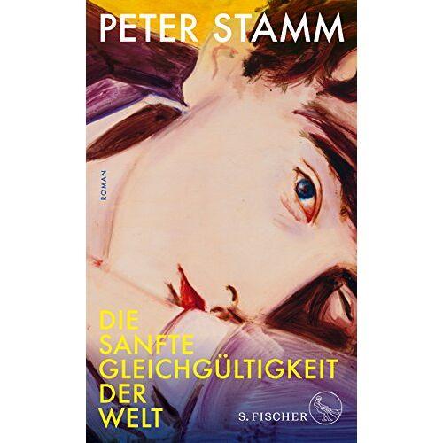 Peter Stamm - Die sanfte Gleichgültigkeit der Welt: Roman - Preis vom 15.01.2021 06:07:28 h
