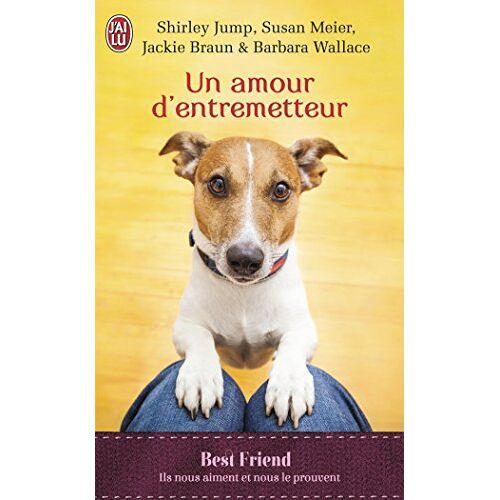 Shirley Jump - Un amour d'entremetteur - Preis vom 17.01.2021 06:05:38 h