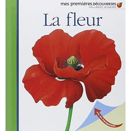 René Mettler - La fleur - Preis vom 21.10.2020 04:49:09 h