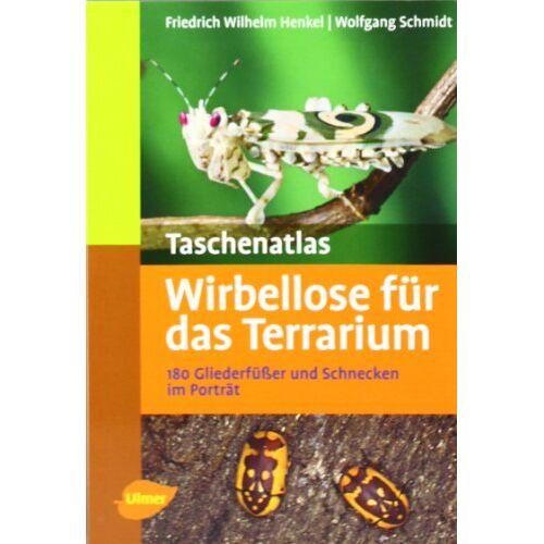 Wolfgang Schmidt - Taschenatlas Wirbellose für das Terrarium: 180 Gliederfüßer und Schnecken im Porträt - Preis vom 20.10.2020 04:55:35 h