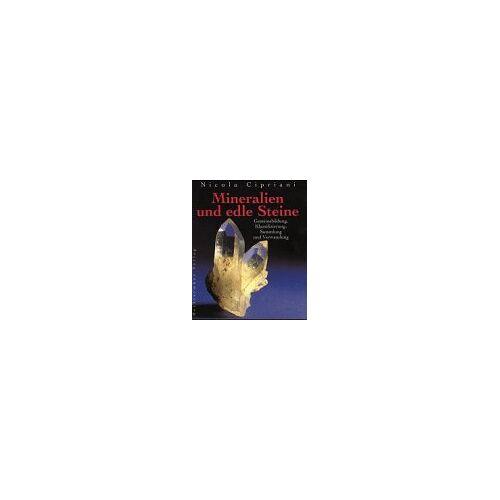 Nicola Cipriani - Mineralien und edle Steine. Gesteinsbildung, Klassifizierung, Sammlung und Verwendung - Preis vom 11.05.2021 04:49:30 h