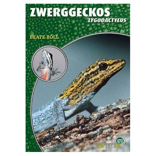 Beate Röll - Zwerggeckos: Lygodactylus - Preis vom 26.02.2021 06:01:53 h