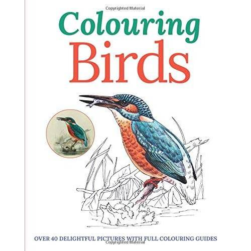 Peter Gray - Colouring Birds (Colouring Books) - Preis vom 03.09.2020 04:54:11 h