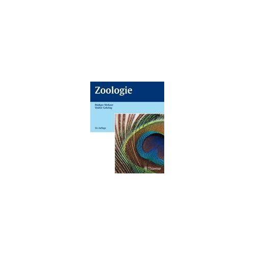 Rüdiger Wehner - Zoologie - Preis vom 28.02.2021 06:03:40 h