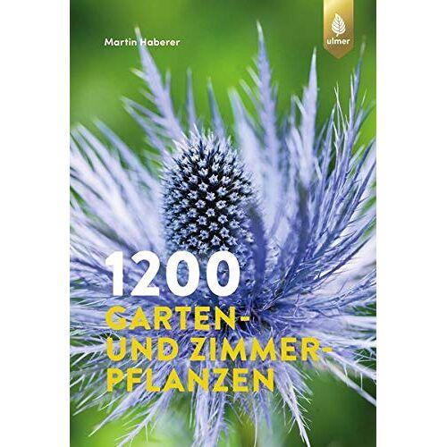 Martin Haberer - 1200 Garten- und Zimmerpflanzen - Preis vom 18.04.2021 04:52:10 h