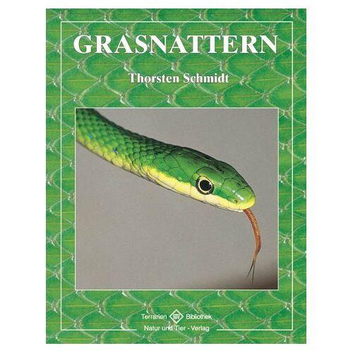 Thorsten Schmidt - Grasnattern - Preis vom 20.10.2020 04:55:35 h