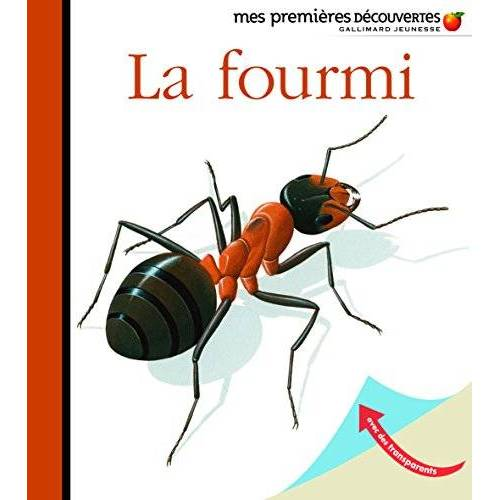 René Mettler - La fourmi - Preis vom 21.10.2020 04:49:09 h