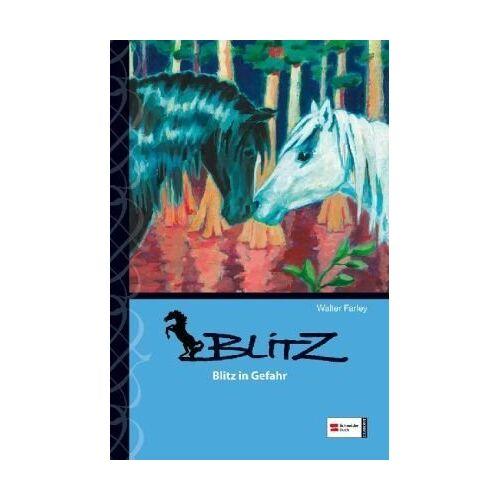 Walter Farley - Blitz, Band 11: Blitz in Gefahr - Preis vom 27.01.2021 06:07:18 h
