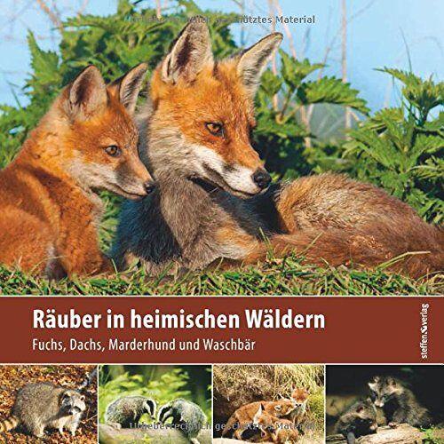 Klaus Borrmann - Räuber in heimischen Wäldern: Fuchs, Dachs, Marderhund und Waschbär - Preis vom 28.02.2021 06:03:40 h