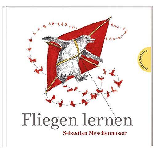 Sebastian Meschenmoser - Fliegen lernen - Preis vom 18.04.2021 04:52:10 h