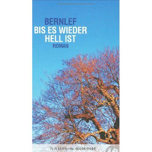 Bernlef - Bis es wieder hell ist - Preis vom 20.10.2020 04:55:35 h