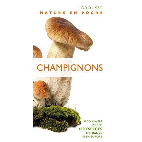 - Champignons - Preis vom 15.04.2021 04:51:42 h