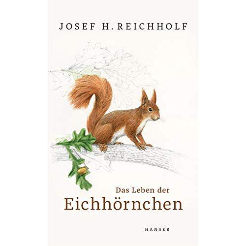 Reichholf, Josef H. - Das Leben der Eichhörnchen - Preis vom 30.03.2020 04:52:37 h
