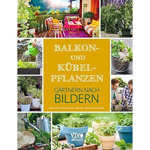 Vivo Buch UG - Balkon- und Kübelpflanzen - Preis vom 27.02.2021 06:04:24 h