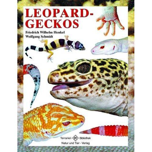 Friedrich-Wilhelm Henkel - Leopardgeckos - Preis vom 20.10.2020 04:55:35 h