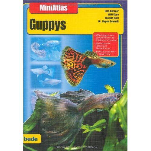 Jens Bergner - Guppys, MiniAtlas - Preis vom 25.10.2020 05:48:23 h