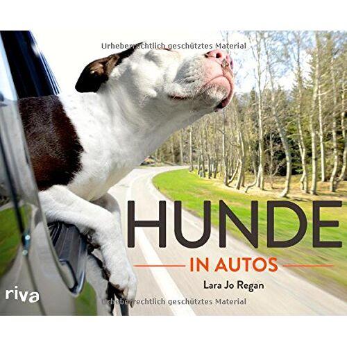 Regan, Lara Jo - Hunde in Autos - Preis vom 13.09.2019 05:32:03 h
