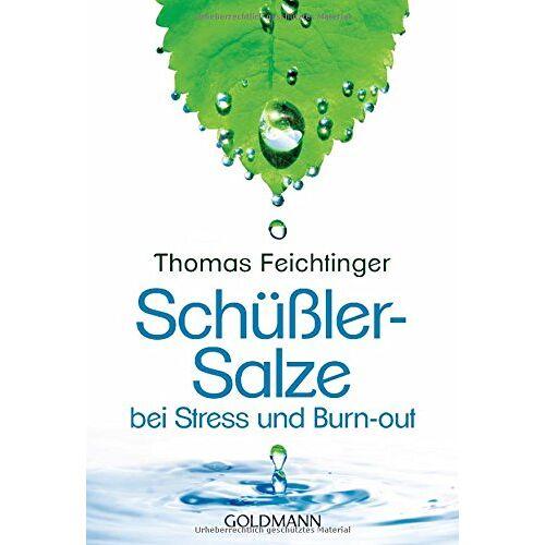 Thomas Feichtinger - Schüßler-Salze bei Stress und Burn-out - Preis vom 09.04.2021 04:50:04 h
