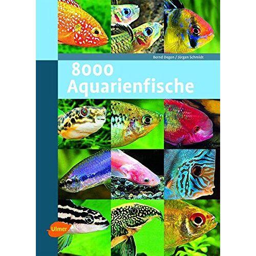 Jürgen Schmidt - 8000 Aquarienfische - Preis vom 20.10.2020 04:55:35 h