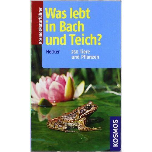 Frank Hecker - Was lebt in Bach und Teich?: 250 Tiere und Pflanzen - Preis vom 22.02.2021 05:57:04 h