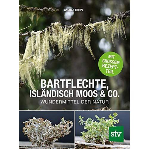 Andrea Trippl - Bartflechte, Isländisch Moos & Co.: Wundermittel der Natur; Mit großem Rezeptteil - Preis vom 20.10.2020 04:55:35 h