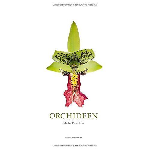 - Orchideen - Preis vom 27.03.2020 05:56:34 h
