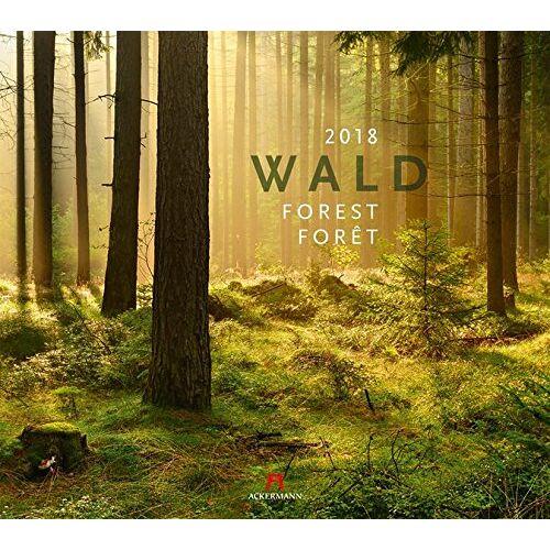 Ackermann Kunstverlag - Wald 2018 - Preis vom 09.04.2020 04:56:59 h