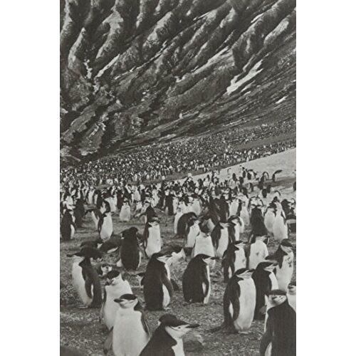 Collectif - Salgado Notebook Islands - Preis vom 16.01.2021 06:04:45 h