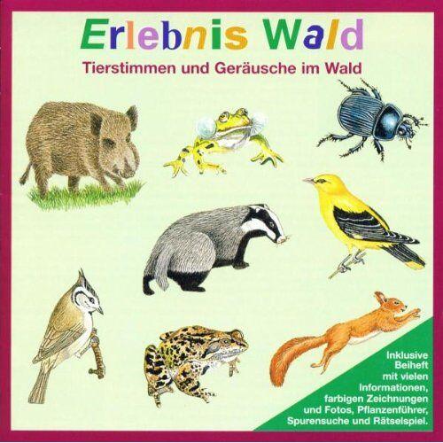 - Erlebnis Wald. CD: Tierstimmen und Geräusche im Wald - Preis vom 29.03.2020 04:52:35 h