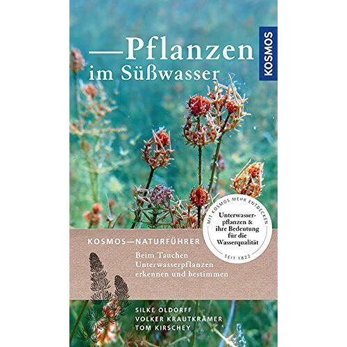 Silke Oldorff - Pflanzen im Süßwasser - Preis vom 13.05.2021 04:51:36 h