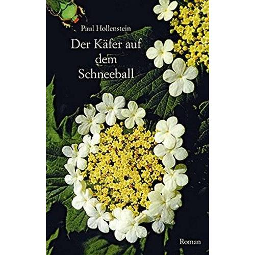 Paul Hollenstein - Der Käfer auf dem Schneeball: Roman - Preis vom 28.02.2021 06:03:40 h
