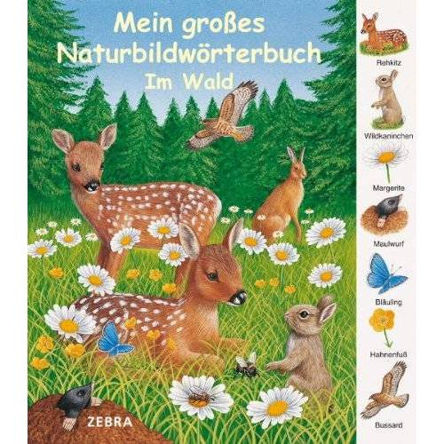 - Mein großes Naturbildwörterbuch: Im Wald - Preis vom 13.11.2019 05:57:01 h