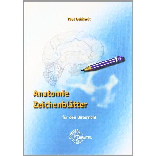 Paul Gebhardt - Anatomie Zeichenblätter: Für den Unterricht - Preis vom 21.10.2020 04:49:09 h