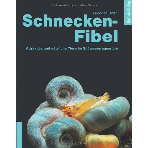 Friedrich Bitter - Schnecken-Fibel: Attraktiv und nützlich im Süßwasseraquarium - Preis vom 20.10.2020 04:55:35 h