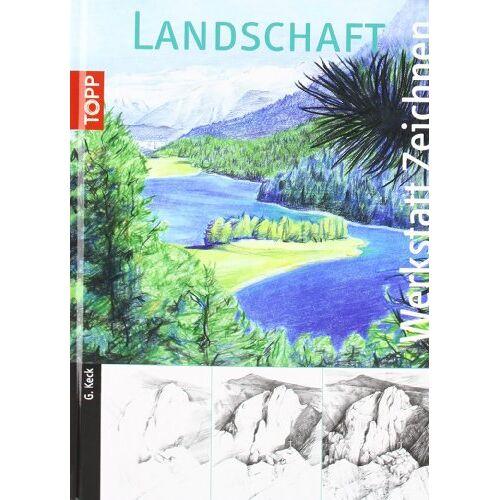 Gecko Keck - Landschaften: UE294 - Preis vom 24.02.2021 06:00:20 h