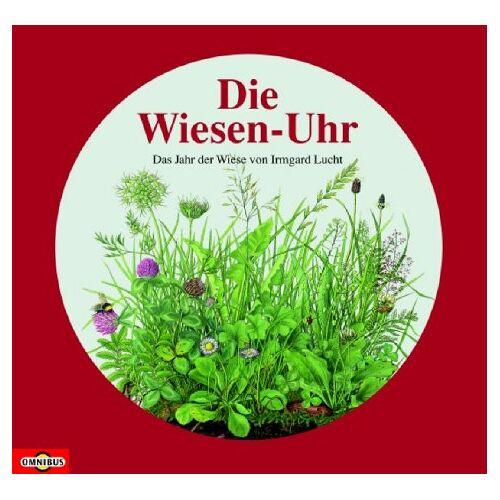 Irmgard Lucht - Die Wiesen-Uhr. Das Jahr der Wiese. - Preis vom 21.10.2020 04:49:09 h