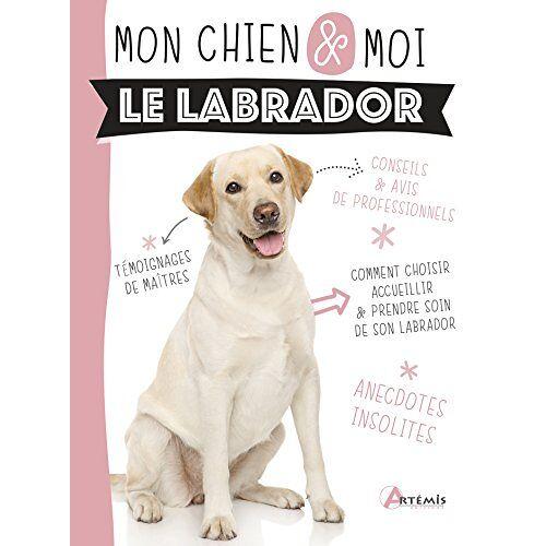 - Labrador (Le) (MON CHIEN & MOI) - Preis vom 09.05.2021 04:52:39 h