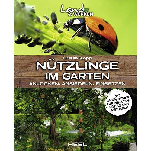 Ursula Kopp - Nützlinge im Garten – anlocken, ansiedeln, einsetzen: mit Bauanleitung für ein Insektenhotel (Land & Werken) - Preis vom 18.10.2020 04:52:00 h