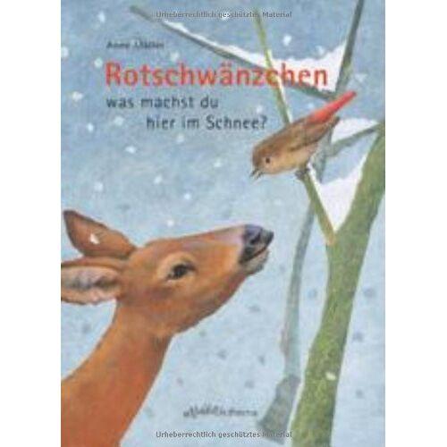 Anne Möller - Rotschwänzchen - was machst du hier im Schnee? - Preis vom 15.05.2021 04:43:31 h