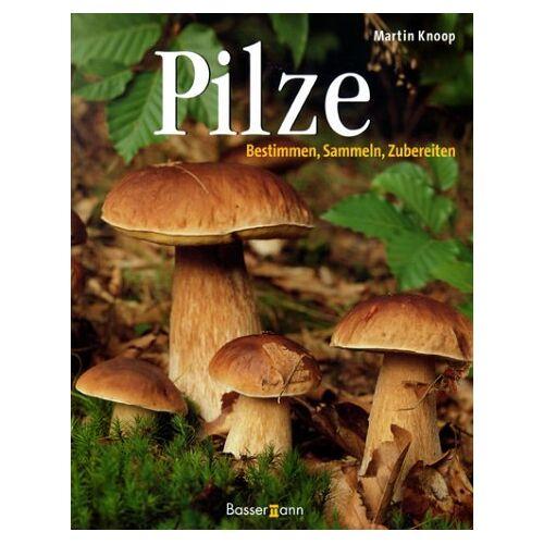Martin Knoop - Pilze - Preis vom 27.02.2021 06:04:24 h