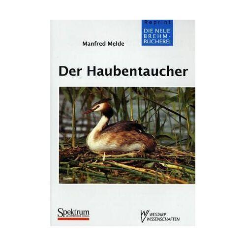 Melde - HAUBENTAUCHER PODICEPS CRISTATUS - Preis vom 12.05.2021 04:50:50 h