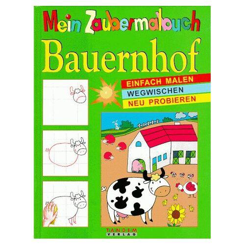Montchoisy, Valerie de - Mein Zaubermalbuch, Bauernhof - Preis vom 09.04.2020 04:56:59 h
